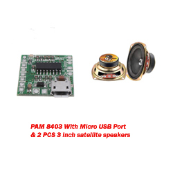 PAM 8403 Micro USB with 2 Pcs 3inch Satellite Speaker